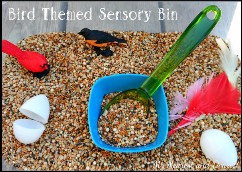 Bird Themed Sensory Bin from mynearestanddearest.com: Fun & Simple Sensory play ideas for baby, toddler, preschooler