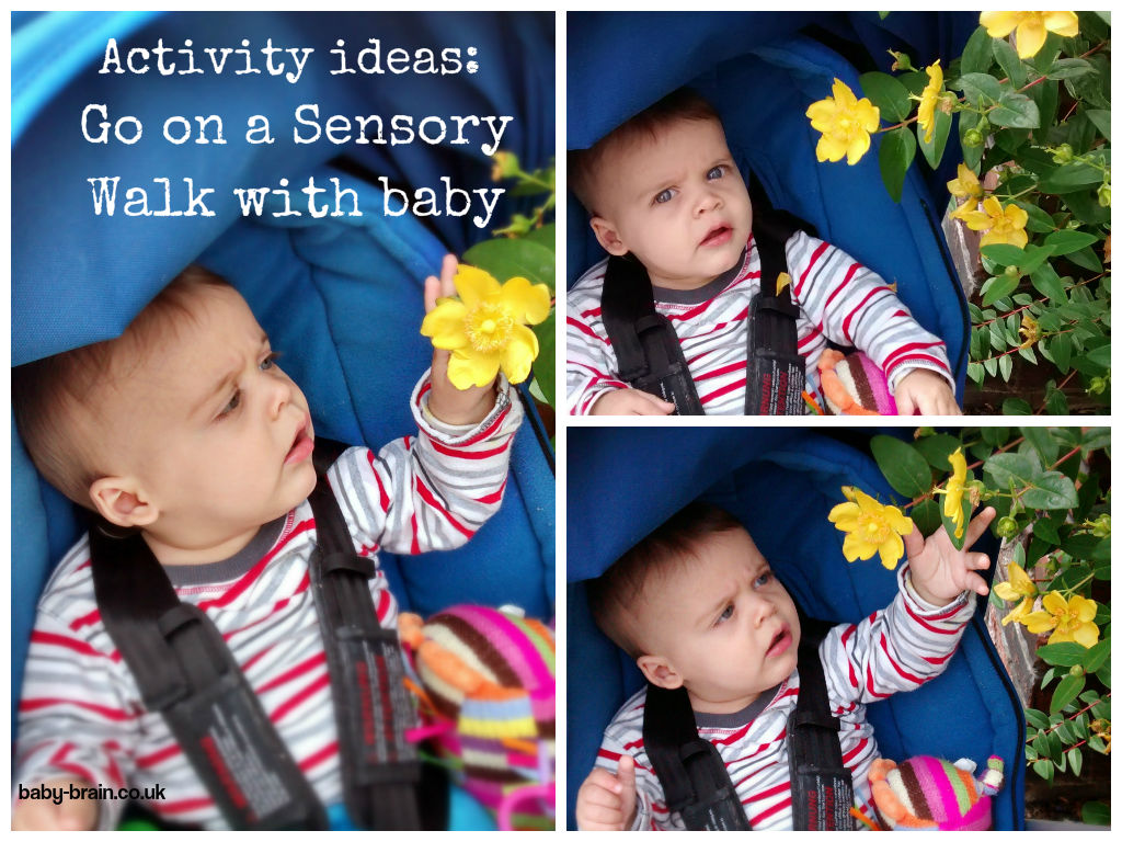 Sensory walk with baby - what can you find outside your home? - baby-brain.co.uk activity ideas to increase mood reduce cabin fever when on maternity leave