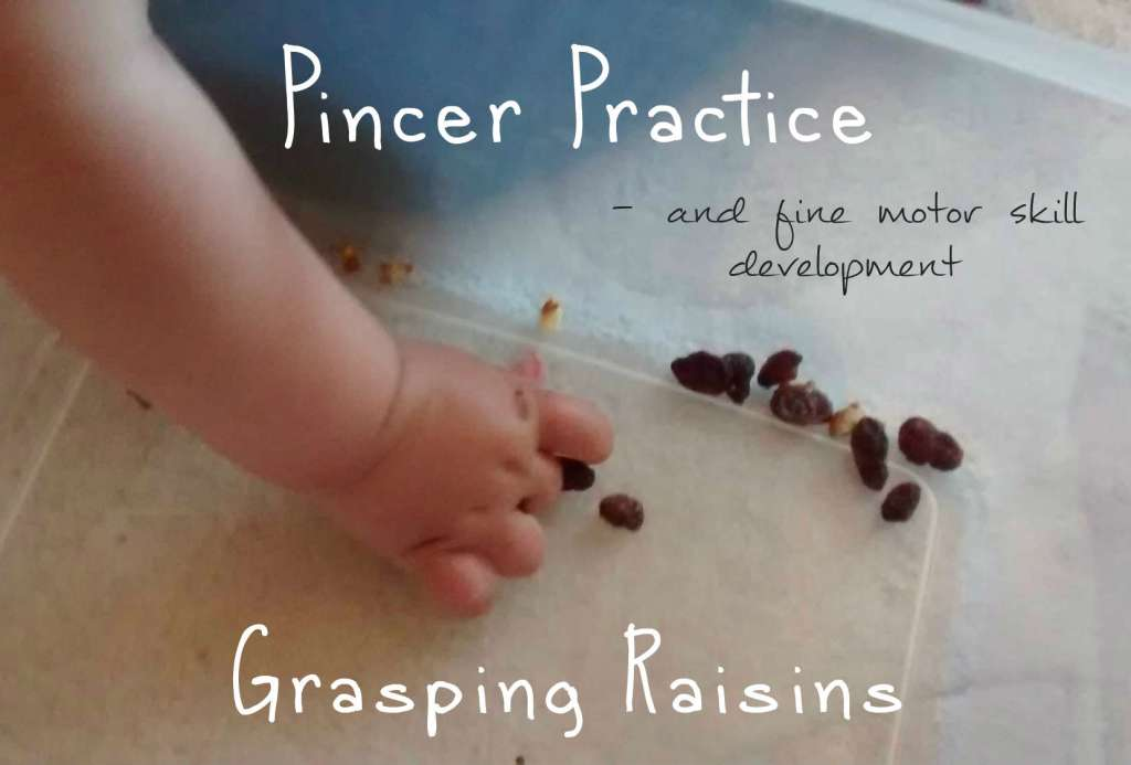 Pincer Grasp Writing Developing Pincer Grasp And