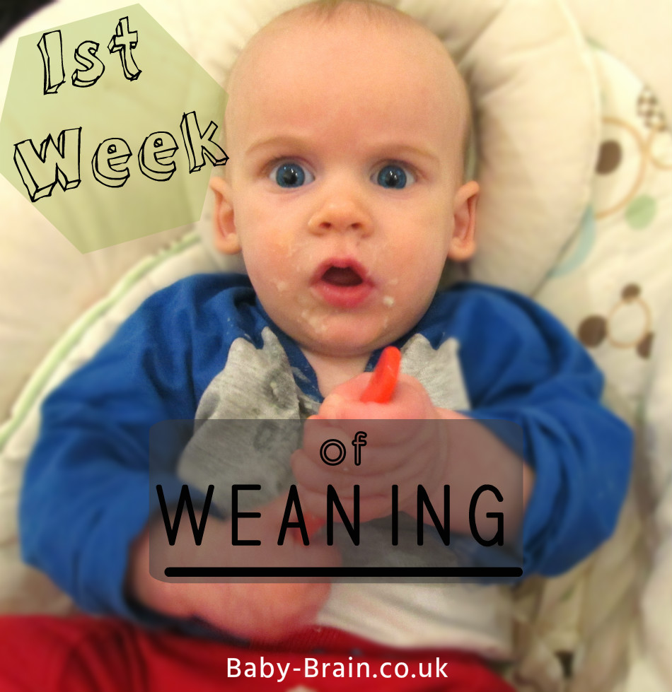 The first week of weaning: what we ate and why. Baby-Brain.co.uk. Pschology, babies, motherhood